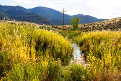 A creek flows through wetland plants and mountains in Browns Park NWR in Colorado. A creek flows through wetland plants and mountains in Browns Park National stock photo
