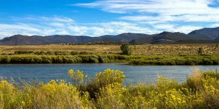 The Green River flows through Browns Park NWR in Colorado. Panorama of the Green River, which looks blue as it flows through lush wetlands and prairie royalty free stock images