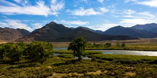 The Green River flows through Browns Park NWR in Colorado. The Green River flows through lush wetlands and Cottonwood trees in Browns Park National Wildlife stock images