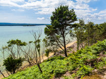 Brownsea Island in Poole Harbour Royalty Free Stock Photography