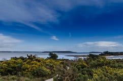 Brownsea island. Shot from Arne beach Stock Image