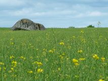 Brownshill dolmen in Ireland. Brownshill dolmen a megalithic portal tomb in County Carlow, Ireland stock photo