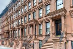 Brownstones Гарлема - Нью-Йорк Стоковое Изображение RF