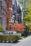 Brownstones in autunno Fotografie Stock