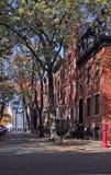 Brownstones Brooklyn Heights, Бруклин Нью-Йорк, США Стоковые Изображения RF