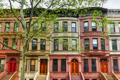 Brownstones de Harlem - New York City Imagem de Stock Royalty Free