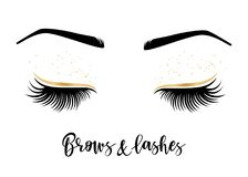 Brows and lashes lettering. Vector illustration of lashes and brows. For beauty salon, lash extensions maker, brow master Royalty Free Stock Photography