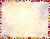 Flowers frame in grunge back,  Royalty Free Stock Images