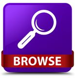 Browse purple square button red ribbon in middle Stock Photos