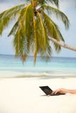 Browsing internet from the beach Stock Photos