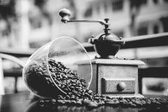 Broyeur de café élégante Images libres de droits
