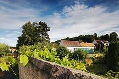 2016/07/07 Brozany nad Ohri, republika czech - ściana wzdłuż drogi prowadzi rzeczny Ohre w tle, jest rodzina dom Zdjęcia Royalty Free