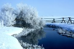 Brrrr it's frosty cold. Frost settled on willows making a chilly but beautiful scene with reflections from a natural spring Stock Photo