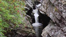 Bruar tranquilo, que calma baja en el perthshire, Escocia durante otoño almacen de metraje de vídeo