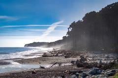 Bruce Bay, Neuseeland Lizenzfreies Stockbild