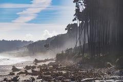 Bruce Bay, Nueva Zelanda Imagenes de archivo