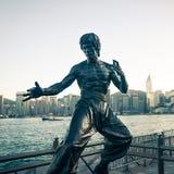 Bruce Lee fotografia de stock