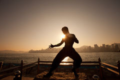Bruce lee's statue Royalty Free Stock Image