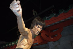 Bruce Lee, Singapur Zdjęcia Stock