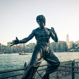 Bruce Lee Stock Photography