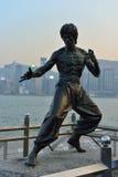 Bruce Lee status Zdjęcie Stock