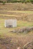 Bruciatore del rifiuto agricolo Fotografia Stock