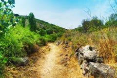 Brud ścieżka w Sardyńskiej wsi zdjęcia stock