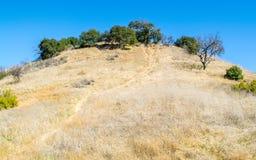 Brud ścieżki puszek toczny wzgórze w Snata Monica górach Kalifornia fotografia royalty free