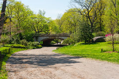 Brud- bana i Central Park Royaltyfri Fotografi