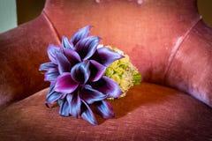 Brud- bukett för purpurfärgad calla för brud Royaltyfria Foton
