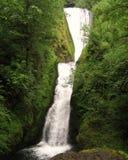 brud- falls skyler Arkivbild