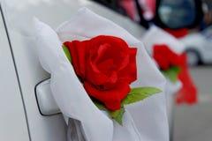 Brud i den vita klänningen Royaltyfri Foto