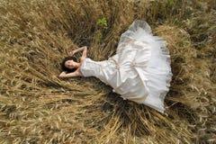 Brud i ett fält Fotografering för Bildbyråer