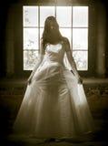 Brud i ljuset Arkivfoto