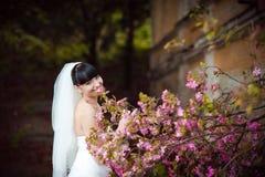 Brud med samlat hår nära ett blomningträd fotografering för bildbyråer