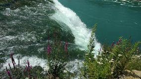 Brud- nedgångar på Niagara Falls Arkivfoto
