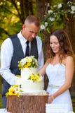 Brud och brudgum Cutting Cake royaltyfria bilder