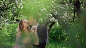 Brud och brudgum i en blommande Apple trädgård lager videofilmer