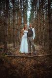 Brud och brudgum i skogen av granar royaltyfri bild