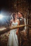 Brud och brudgum i skogen av granar royaltyfria bilder