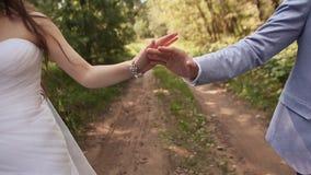 Brud och brudgum i skogen som de går tillsammans och att rymma händer Räcker närbild lyckligt tillsammans bröllop för tappning fö stock video