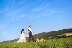Brud och brudgum med hunden Royaltyfri Bild