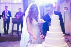 Brud och brudgum på bröllop som klipper bröllopstårtan royaltyfri foto
