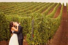 Brud och brudgum på en grön kall vingård för regnig dag Royaltyfri Bild