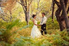 Brud och brudgum som går i natursommar Arkivfoto