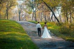 Brud och brudgum som går i natursommar Royaltyfria Bilder