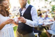Brud och brudgum som klirrar exponeringsglas på bröllopmottagandet utanför i trädgården royaltyfri foto