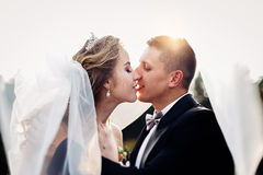 Brud och brudgum som kramar på bröllopet i natur royaltyfria bilder