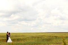 Brud och brudgum som kysser i fälten arkivbilder