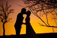 Brud och brudgum som kysser i solnedgången Arkivbild